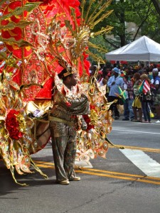 Fall Colours at West Indian Carnival, Brooklyn